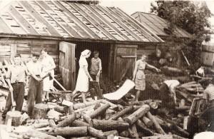 Заготовка дров уч.школы к.50-х